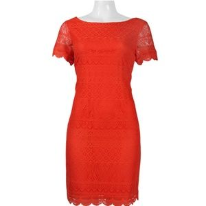 Crochet Lace Dress(T1275M/TANGELO)